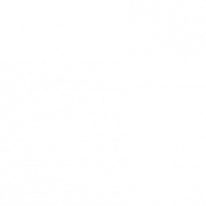 I-COM Winner 2020 Data Startup Challenge Badge